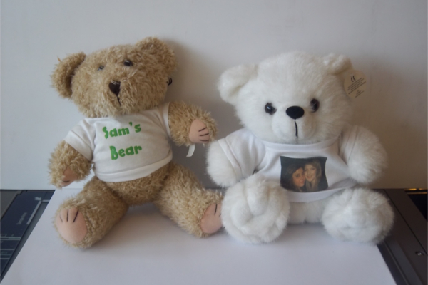 Teddy bears with printed t-shirts